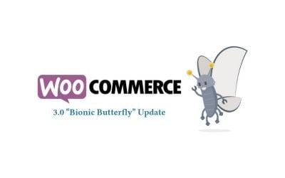 WooCommerce 3.0 Major Update Released