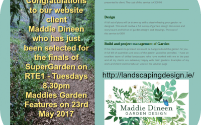 Super Garden Finalist Maddie Dineen's Website for Landscaping Services
