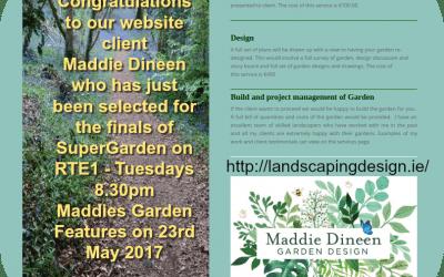 Super Garden Finalist Maddie Dineen's Website for Landscaping Services
